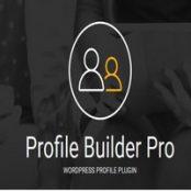 افزونه فارسی پروفایل بیلدر پرو  Profile Builder Pro همراه با افزودنی ها