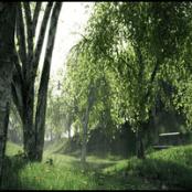 آموزش ساخت درخت در مایا ۲۰۱۹