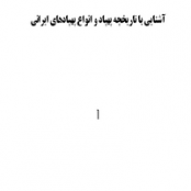 مقاله آشنایی با تاریخچه پهپاد و انواع پهپادهای ایرانی