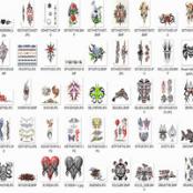 مجموعه کاملی از طرح های معرق ، تاتو و خالکوبی