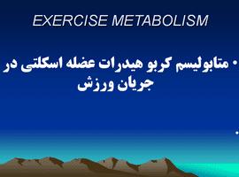 پاورپوینت متابولیسم کربو هیدرات عضله اسکلتی در جریان ورزش
