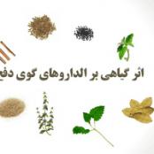 پاورپوینت اثر داروهای گیاهی بر الگوی دفع