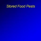 پاورپوینت Stored Food Pests