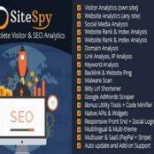 اسکریپت تجزیه و تحلیل و بسایت SiteSpy