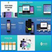 افتر افکت تبلیغاتی Agency Promo with Devices
