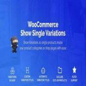 افزونه WooCommerce Show Variations as Single Products