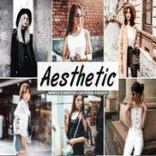 پک پریست لایتروم Aesthetic Lightroom Presets Pack V2
