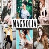 پریست لایت روم مگنولیا Magnolia Lightroom Presets Pack