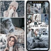 پریست لایت روم Silver Mood Lightroom Presets
