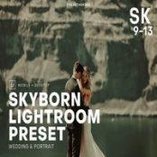 پریست لایتروم Skyborn High Quality Premium Lightro