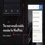 افزونه منوی موبایل Touchy برای وردپرس
