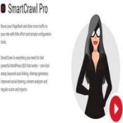 افزونه SmartCrawl Pro برای وردپرس