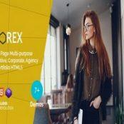 قالب اچ تی ام ال تک صفحه Norex