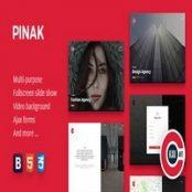 قالب HTML به زودی PINAK