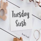 فونت Tuesday Sush – Brush Script Font