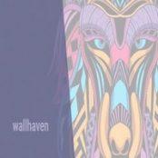 افزونه Wallhaven برای وردپرس