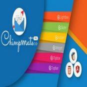 افزونه ChimpMate Pro برای وردپرس