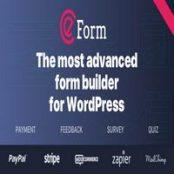 افزونه eForm برای وردپرس