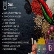 قالب HTML رستوران و کافه Owl Restaurant