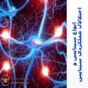 پاورپوینت انواع سیناپس و اختلالال عملکردی سیناپس