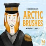 براش پروکریت Arctic Dry Brushes for Procreate