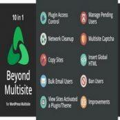 افزونه Beyond Multisite برای وردپرس