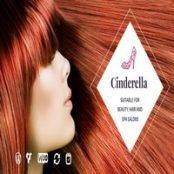 قالب Cinderella برای وردپرس