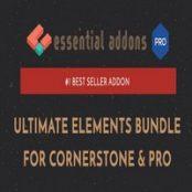 افزونه Essential Addons for Cornerstone & Pro