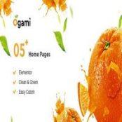 قالب Ogami برای وردپرس