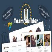 افزونه Team Builder برای وردپرس