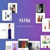 قالب Payna – قالب فروشگاهی وردپرس