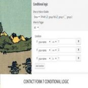افزونه Contact Form 7 Conditional Logic