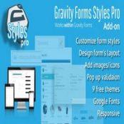 افزونه Gravity Forms Styles Pro