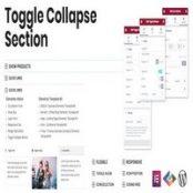 افزونه Toggle Collapse Section برای المنتور