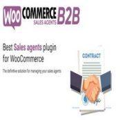 افزونه WooCommerce B2B Sales Agents