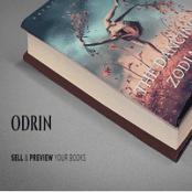 قالب وردپرس Odrin