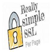 افزونه فارسی Really Simple SSL per Page