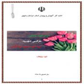 شهید پژوهی درباره شهید سید علی حسینی خیرآبادی