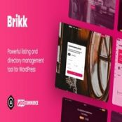 قالب Brikk برای وردپرس
