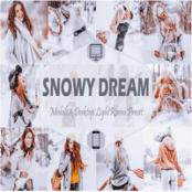 مجموعه پریست لایتروم Snowy Dream
