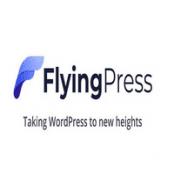 افزونه FlyingPress برای وردپرس
