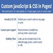 افزونه Custom JavaScript & CSS in Pages برای وردپرس