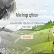 افزونه Webcraftic Robin Image Optimizer Pro برای وردپرس